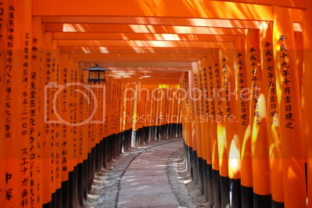Light breaks in between the gates of the Fushimi Inari Shinre