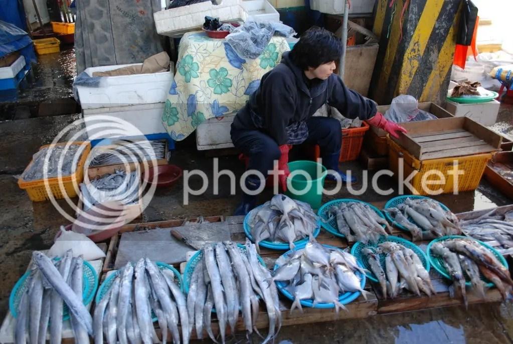 lady selling fish