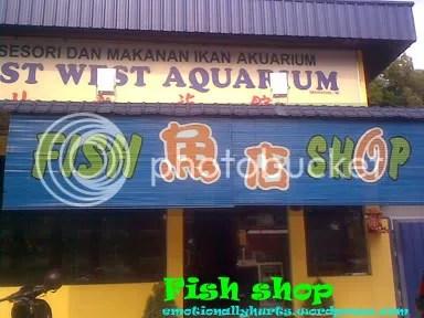 kedai ikan