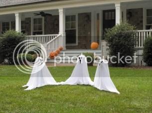 Halloween Yark Stakes
