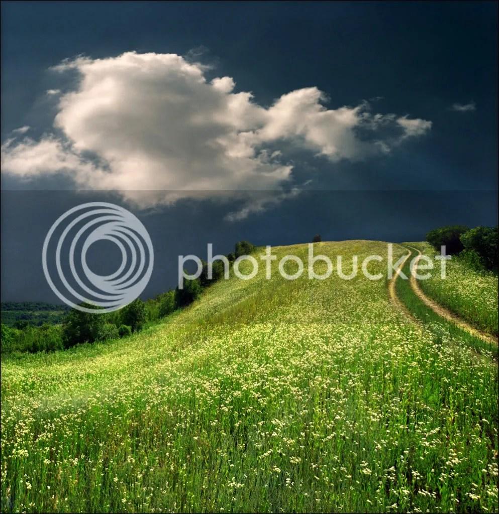 Winding Path photo WindingPath.jpg