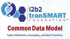 Common Data Model Image