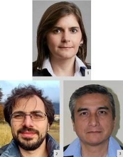 authors_bianca-vienni_federico-vasen_juan-carlos-villa-soto