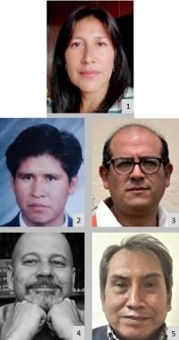 authors_adriana-moreno-cely_dario-uajera-nahui_cesar-escobar-vasquez_tom-vanwing_nelson-tapia-ponce