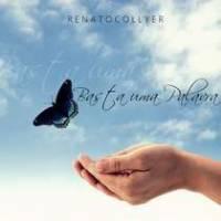 cd-renato-collyer-basta-uma-palavra