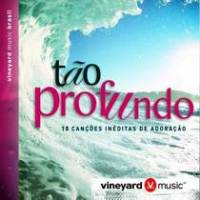 cd-vineyard-brasil-tao-profundo
