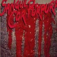 cd-voz-da-verdade-sangue-cor-purpura