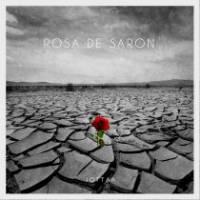 musica-rosa-de-saron-jotta-a