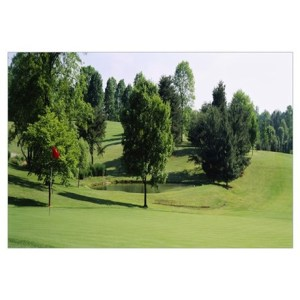 Trees on a golf course  Woodholme Country Club  Ba Poster