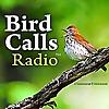 Bird Call Radio   Exploring birdlife around the world
