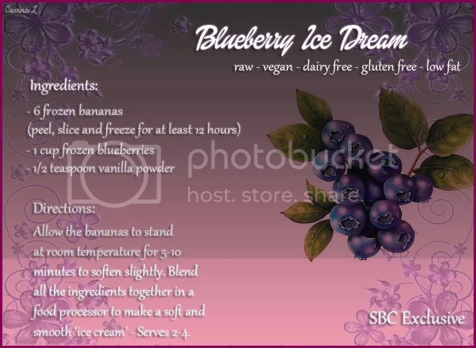 photo Blueberry ice dream.jpg
