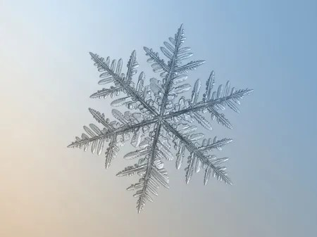 Snowflake Photographs by Alexey Kljator
