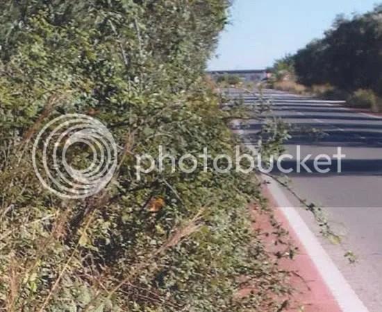 [foto: la carretera al lado del CB]