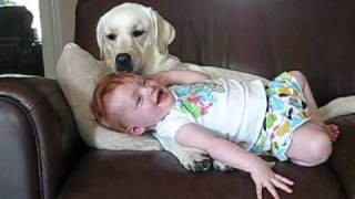 Prijateljstvo izmedju psa i deteta