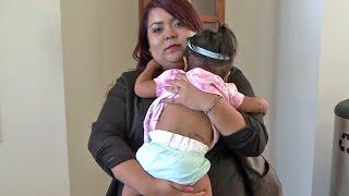 San Jose Police K-9 Bites Toddler