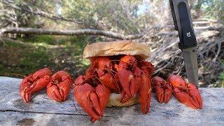 Making a Crawfish Sandwich - Catch n' Cook Crawfish!