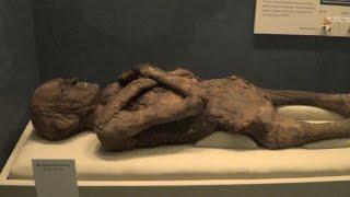 Smithsonian National Museum of Natural History - REAL USA Ep, 167