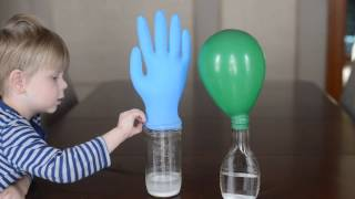 10 Easy Science Experiments - That Will Amaze Kids
