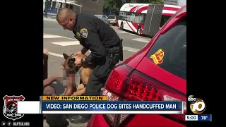 shows man caught in bite by SDPD K9