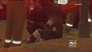 Teen Robbery Suspect Bitten By Police Dog In South LA