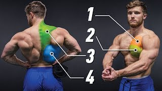 The Most Effective Science-Based Chest & Back Workout (Full Upper Body) | Science Applied