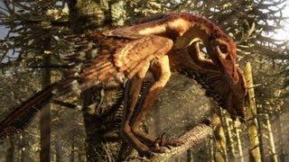 Sinornithosaurus: A poisonous bite | deadly day or night | Planet Dinosaur | BBC