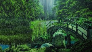 Peaceful Relaxing Instrumental Music, Meditation Soft Music ″Mountain Bridges″ by Tim Janis