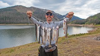 Fishing Mountain Lake for Food | Trout & Salmon Catch & Cook!