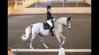 Dressage competition with Mutter! (Lätt B:1, 64.10%)