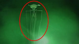 Top 15 SCARY Mysterious Creatures Caught On