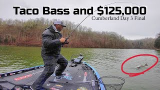 A Taco Bass Cost Me $125,000!!