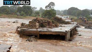 Cyclone Idai: Red Cross says damage is 'massive, horrifying'