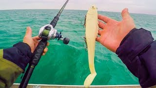 UNEXPECTED Giant Dinosaur Fish Caught While Muskie Fishing    Lake Saint Clair Musky Battle