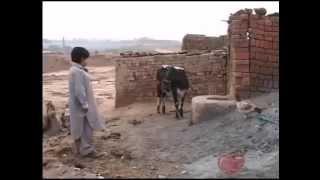 new funny pothwari drama clip /DHCJm5qm4Tk