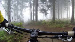 Young Man Chased By Bigfoot While Mountain Biking In Washington