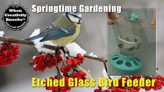 Etched Glass Bird Feeder