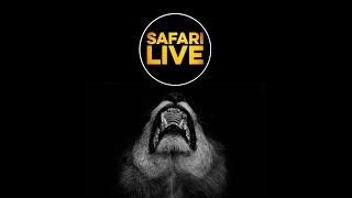 safariLIVE - Sunset Safari - April 22, 2018