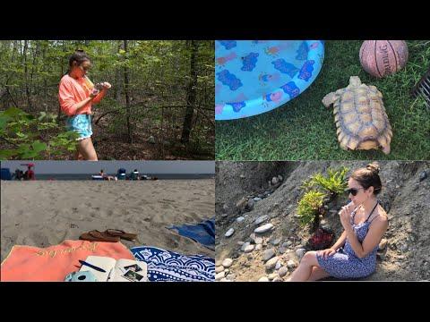 Weekly Vlog // Forest & Beach adventures!!!