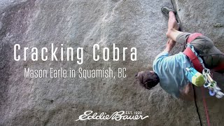 Cracking Cobra