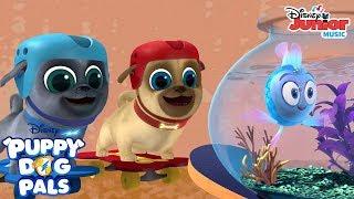 Olivia! | Puppy Dog Pals | Disney Junior