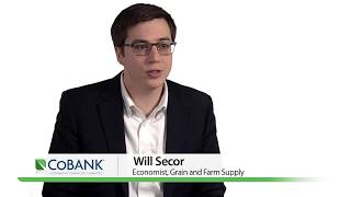 Seed Crop Protection Shakeup | CoBank Knowledge Exchange Research Brief