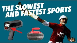 The SLOWEST and FASTEST Sports - Speed Comparison