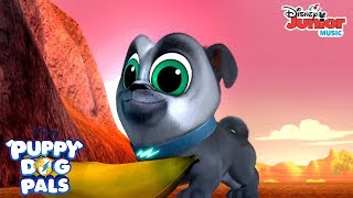 Looking for a Boomerang Music | Puppy Dog Pals | Disney Junior