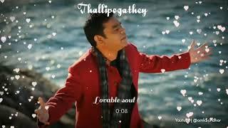 Thallipogathey 😍bgm song 💙 WhatsApp status 💞 from achcham yenbathu madamaiyada movie🔥