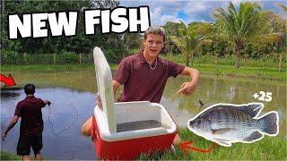 STOCKING My BACKYARD POND with NEW FISH!!!