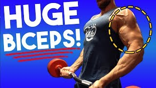 The PERFECT Bicep Workout For Growth (STEAL THIS!)