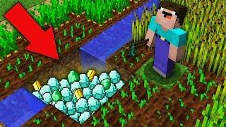Minecraft NOOB vs PRO: NOOB FOUND TREASURE UNDER FARMLAND THIS VILLAGE! Challenge 100% trolling