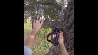 TESTING THE ECHO 2511T, IN A BIG FIR REMOVAL
