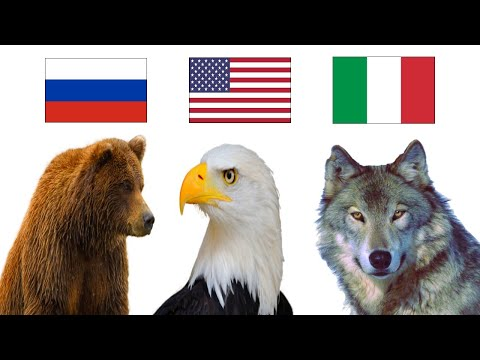 National Animals of the World