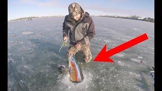Pesca Sobre Hielo Sucede Lo Inesperado